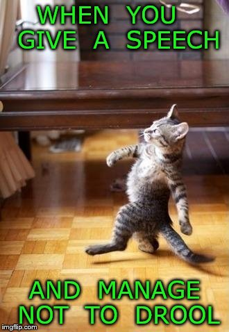 Cool Cat Stroll Meme | WHEN  YOU   GIVE  A  SPEECH AND  MANAGE NOT  TO  DROOL | image tagged in memes,cool cat stroll | made w/ Imgflip meme maker