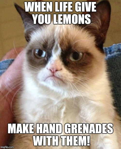 I don't want your damn lemons! | WHEN LIFE GIVE YOU LEMONS MAKE HAND GRENADES WITH THEM! | image tagged in memes,grumpy cat | made w/ Imgflip meme maker