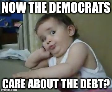 It didn't seem to matter when their guy was spending my money on things I didn't want | NOW THE DEMOCRATS CARE ABOUT THE DEBT? | image tagged in incredulous baby | made w/ Imgflip meme maker