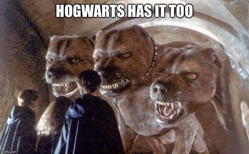 HOGWARTS HAS IT TOO | made w/ Imgflip meme maker