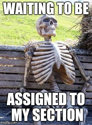 Waiting Skeleton Meme | WAITING TO BE ASSIGNED TO MY SECTION | image tagged in memes,waiting skeleton | made w/ Imgflip meme maker