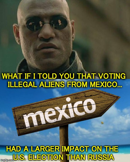 What nobody seems to be talking about | HAD A LARGER IMPACT ON THE U.S. ELECTION THAN RUSSIA WHAT IF I TOLD YOU THAT VOTING ILLEGAL ALIENS FROM MEXICO... | image tagged in election 2016,president trump,illegal immigration,mexico | made w/ Imgflip meme maker