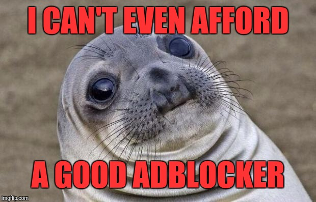 Awkward Moment Sealion Meme | I CAN'T EVEN AFFORD A GOOD ADBLOCKER | image tagged in memes,awkward moment sealion | made w/ Imgflip meme maker