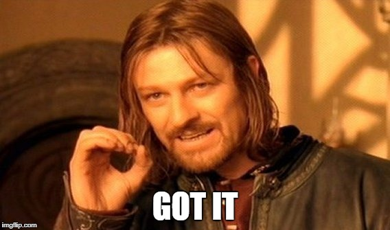 One Does Not Simply Meme | GOT IT | image tagged in memes,one does not simply | made w/ Imgflip meme maker