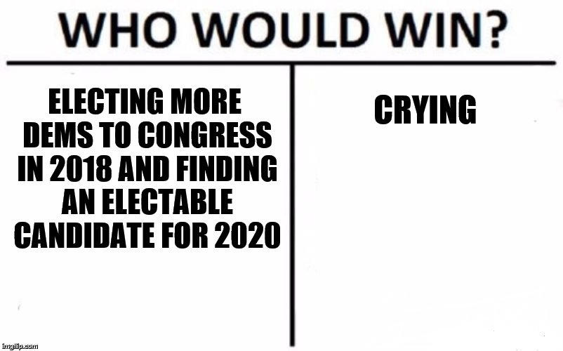 Who Would Win? Meme | ELECTING MORE DEMS TO CONGRESS IN 2018 AND FINDING AN ELECTABLE CANDIDATE FOR 2020 CRYING | image tagged in memes,who would win | made w/ Imgflip meme maker