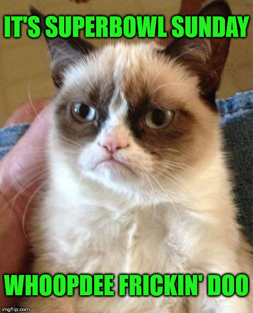 Super Grumpy Cat | IT'S SUPERBOWL SUNDAY WHOOPDEE FRICKIN' DOO | image tagged in memes,grumpy cat,superbowl,philadelphia eagles,new england patriots | made w/ Imgflip meme maker