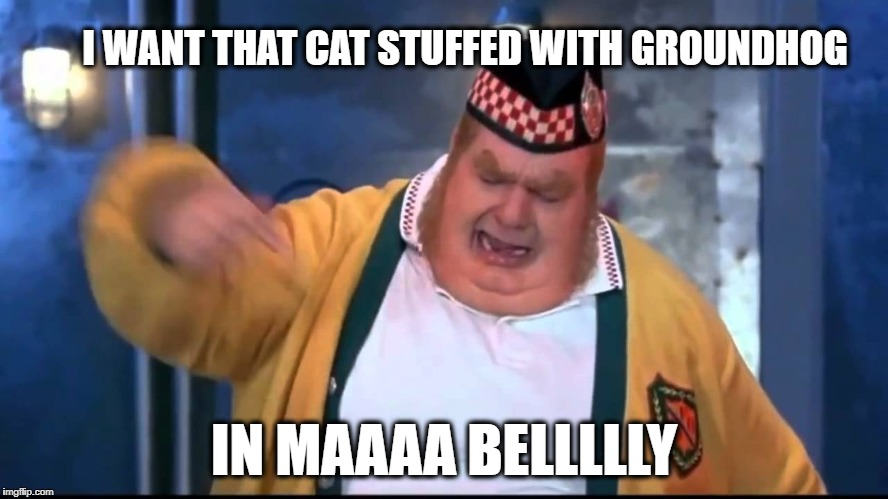 Belly | I WANT THAT CAT STUFFED WITH GROUNDHOG IN MAAAA BELLLLLY | image tagged in belly | made w/ Imgflip meme maker