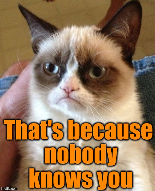 Grumpy Cat Meme | That's because nobody knows you | image tagged in memes,grumpy cat | made w/ Imgflip meme maker