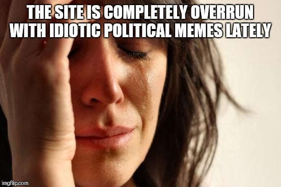 First World Problems Meme | THE SITE IS COMPLETELY OVERRUN WITH IDIOTIC POLITICAL MEMES LATELY | image tagged in memes,first world problems | made w/ Imgflip meme maker