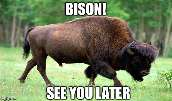 BISON! SEE YOU LATER | made w/ Imgflip meme maker