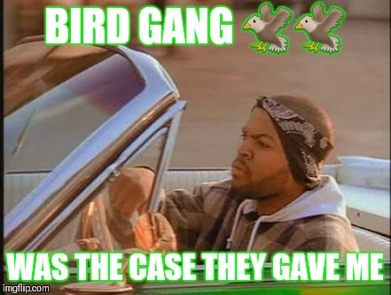 Ice Cube good day | BIRD GANG  | image tagged in ice cube good day | made w/ Imgflip meme maker