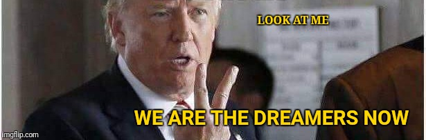 Look At Me | LOOK AT ME WE ARE THE DREAMERS NOW | image tagged in donald trump,dreamers,maga,illegal immigration,dank memes | made w/ Imgflip meme maker