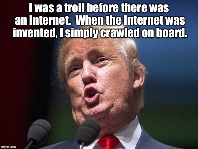 donald trump huge | I was a troll before there was an Internet.  When the Internet was invented, I simply crawled on board. | image tagged in donald trump huge | made w/ Imgflip meme maker