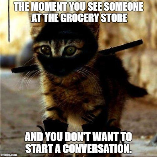 Ninja Cat | THE MOMENT YOU SEE SOMEONE AT THE GROCERY STORE AND YOU DON'T WANT TO START A CONVERSATION. | image tagged in ninja cat | made w/ Imgflip meme maker