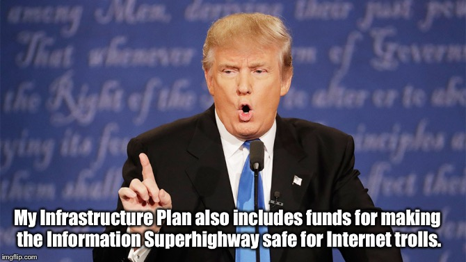 Donald Trump Wrong | My Infrastructure Plan also includes funds for making the Information Superhighway safe for Internet trolls. | image tagged in donald trump wrong | made w/ Imgflip meme maker
