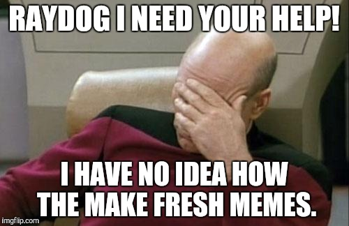 Raydog, help! | RAYDOG I NEED YOUR HELP! I HAVE NO IDEA HOW THE MAKE FRESH MEMES. | image tagged in memes,captain picard facepalm | made w/ Imgflip meme maker