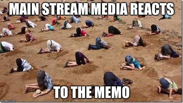 Head in sand | MAIN STREAM MEDIA REACTS TO THE MEMO | image tagged in head in sand | made w/ Imgflip meme maker