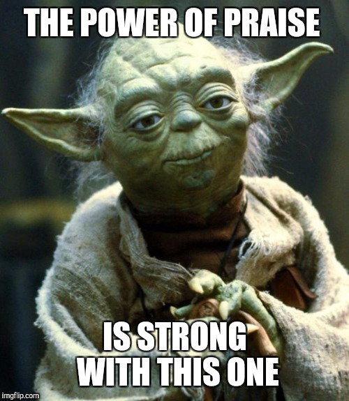 Star Wars Yoda Meme | THE POWER OF PRAISE IS STRONG WITH THIS ONE | image tagged in memes,star wars yoda | made w/ Imgflip meme maker