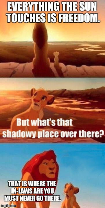 Simba Shadowy Place Meme | EVERYTHING THE SUN TOUCHES IS FREEDOM. THAT IS WHERE THE IN-LAWS ARE YOU MUST NEVER GO THERE. | image tagged in memes,simba shadowy place | made w/ Imgflip meme maker