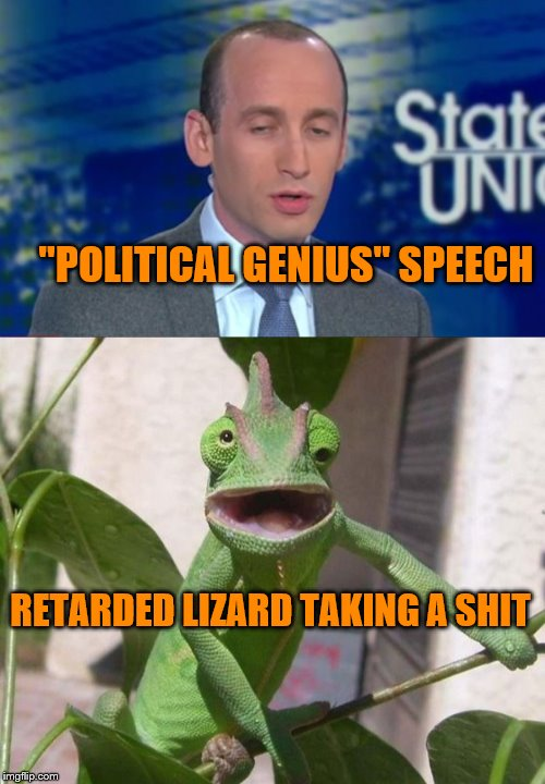 "miller wisdom | ""POLITICAL GENIUS"" SPEECH RETARDED LIZARD TAKING A SHIT 