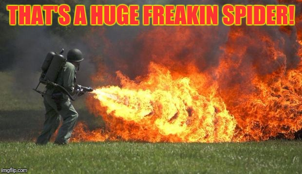 Flame thrower | THAT'S A HUGE FREAKIN SPIDER! | image tagged in flame thrower | made w/ Imgflip meme maker