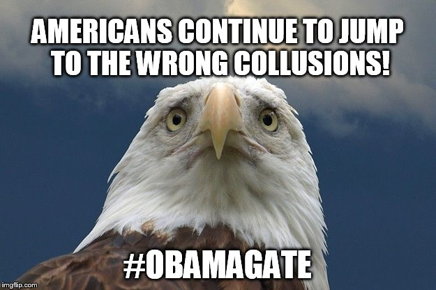 FISA abuse | AMERICANS CONTINUE TO JUMP TO THE WRONG COLLUSIONS! #OBAMAGATE | image tagged in scared eagle,fusion gps,collusion | made w/ Imgflip meme maker