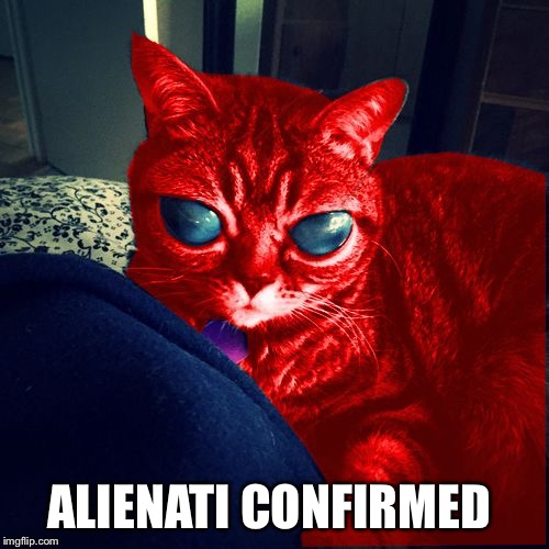 RayCat Aliens | ALIENATI CONFIRMED | image tagged in raycat aliens | made w/ Imgflip meme maker