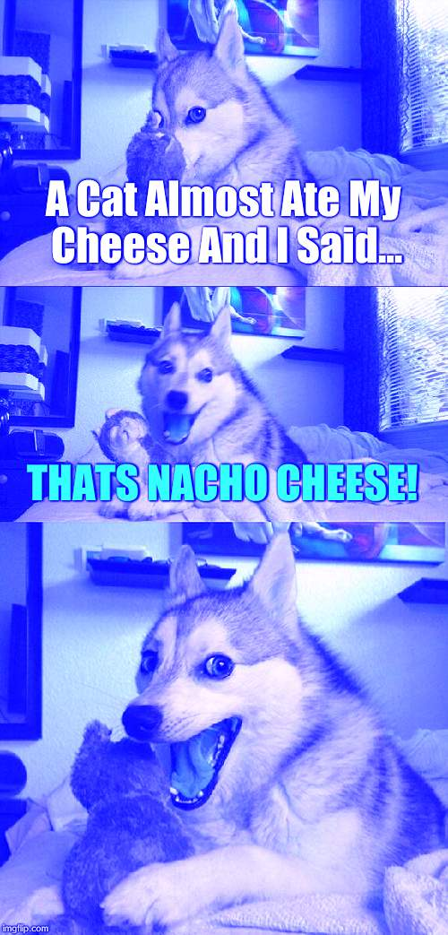 Hope This Tickled Your Funny Bone! (THE PUNS ARE REAL RIGHT NOW) | A Cat Almost Ate My Cheese And I Said... THATS NACHO CHEESE! | image tagged in memes,bad pun dog | made w/ Imgflip meme maker