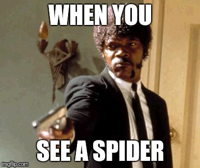 Say That Again I Dare You Meme | WHEN YOU SEE A SPIDER | image tagged in memes,say that again i dare you | made w/ Imgflip meme maker