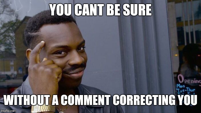 YOU CANT BE SURE WITHOUT A COMMENT CORRECTING YOU | image tagged in memes,roll safe think about it | made w/ Imgflip meme maker
