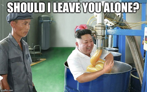Kim's getting a little kinky. | SHOULD I LEAVE YOU ALONE? | image tagged in memes,funny,kim jong un | made w/ Imgflip meme maker
