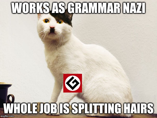 Hitler Cat | WORKS AS GRAMMAR NAZI WHOLE JOB IS SPLITTING HAIRS | image tagged in hitler cat | made w/ Imgflip meme maker