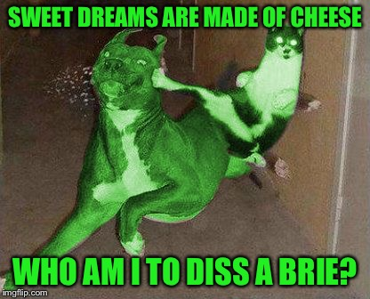 RayCat kicking RayDog | SWEET DREAMS ARE MADE OF CHEESE WHO AM I TO DISS A BRIE? | image tagged in raycat kicking raydog | made w/ Imgflip meme maker