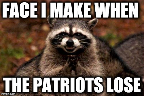 Evil Plotting Raccoon | FACE I MAKE WHEN THE PATRIOTS LOSE | image tagged in memes,evil plotting raccoon | made w/ Imgflip meme maker