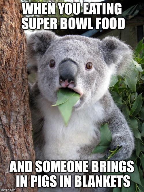 Surprised Koala Meme | WHEN YOU EATING SUPER BOWL FOOD AND SOMEONE BRINGS IN PIGS IN BLANKETS | image tagged in memes,surprised koala | made w/ Imgflip meme maker