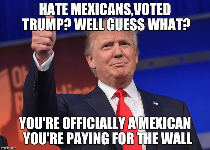 donald trump | HATE MEXICANS,VOTED TRUMP? WELL GUESS WHAT? YOU'RE OFFICIALLY A MEXICAN  YOU'RE PAYING FOR THE WALL | image tagged in donald trump | made w/ Imgflip meme maker
