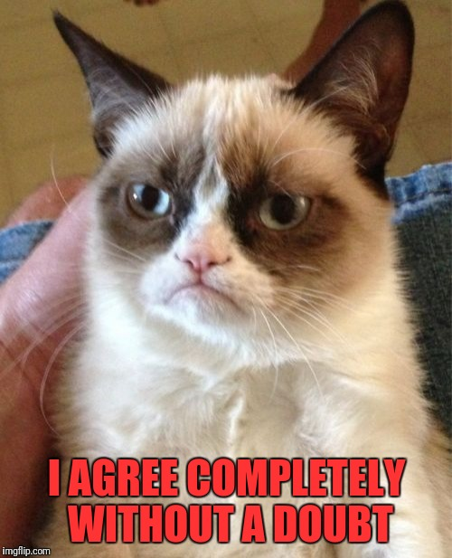 Grumpy Cat Meme | I AGREE COMPLETELY WITHOUT A DOUBT | image tagged in memes,grumpy cat | made w/ Imgflip meme maker