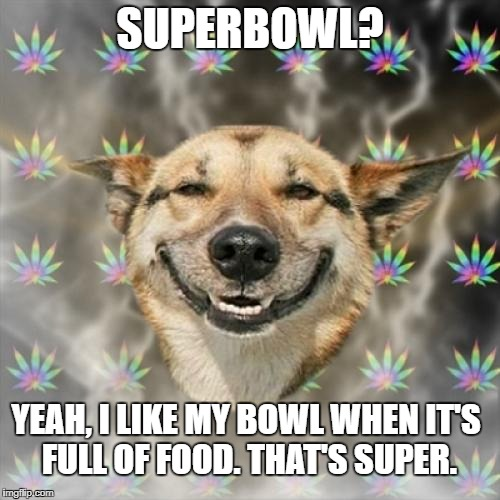 Stoner Dog Meme | SUPERBOWL? YEAH, I LIKE MY BOWL WHEN IT'S FULL OF FOOD. THAT'S SUPER. | image tagged in memes,stoner dog | made w/ Imgflip meme maker