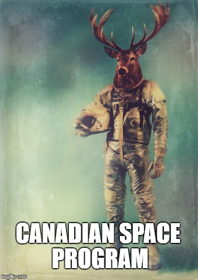 CANADIAN SPACE PROGRAM | image tagged in moose in a space suit | made w/ Imgflip meme maker