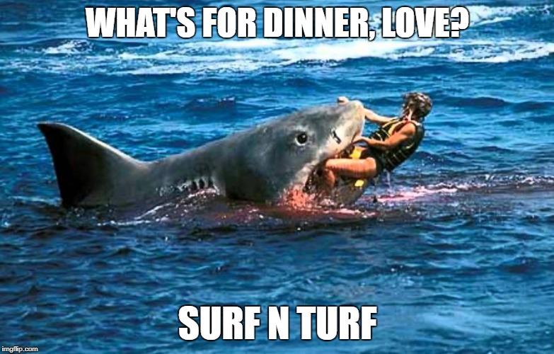 23z78e surf'n memes imgflip