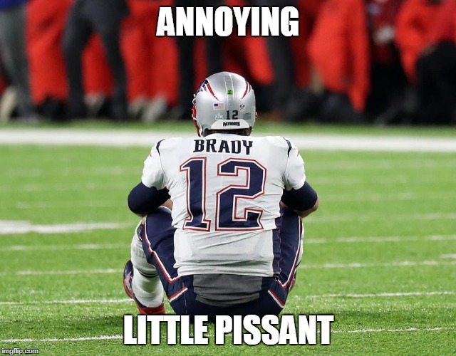 Annoying Little Pissant |  ANNOYING; LITTLE PISSANT | image tagged in tom brady | made w/ Imgflip meme maker