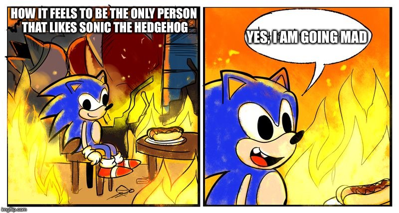 Sonic Forces - This is Fine | HOW IT FEELS TO BE THE ONLY PERSON THAT LIKES SONIC THE HEDGEHOG YES, I AM GOING MAD | image tagged in sonic forces - this is fine | made w/ Imgflip meme maker