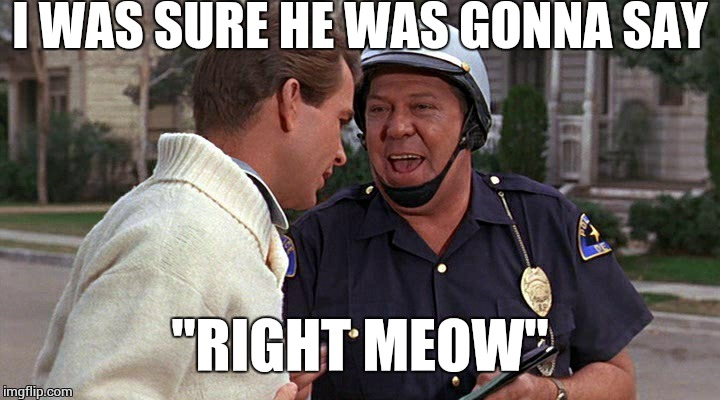 "officer puppy | I WAS SURE HE WAS GONNA SAY ""RIGHT MEOW"" 