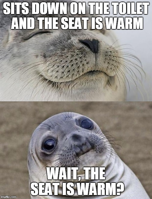 The toilet Seal | SITS DOWN ON THE TOILET AND THE SEAT IS WARM WAIT, THE SEAT IS WARM? | image tagged in funny memes | made w/ Imgflip meme maker