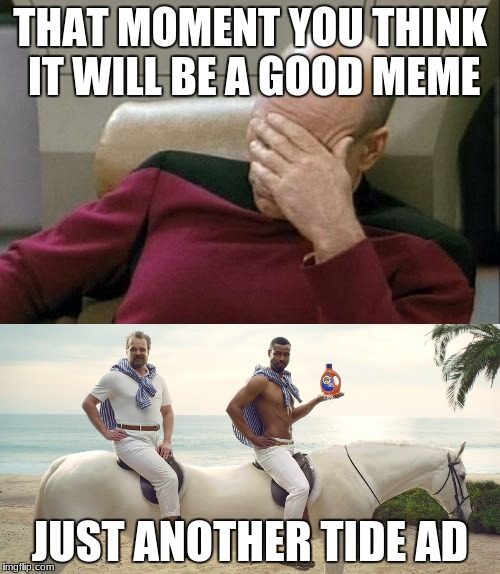 just another meme | THAT MOMENT YOU THINK IT WILL BE A GOOD MEME JUST ANOTHER TIDE AD | image tagged in tide,ads | made w/ Imgflip meme maker