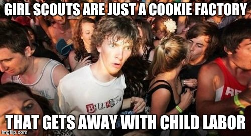 Sudden Clarity Clarence | GIRL SCOUTS ARE JUST A COOKIE FACTORY THAT GETS AWAY WITH CHILD LABOR | image tagged in memes,cookies,sudden clarity clarence | made w/ Imgflip meme maker