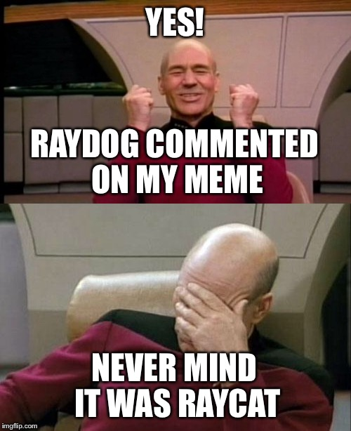 No offense  | YES! NEVER MIND IT WAS RAYCAT RAYDOG COMMENTED ON MY MEME | image tagged in picard,raydog | made w/ Imgflip meme maker