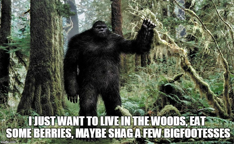 I JUST WANT TO LIVE IN THE WOODS, EAT SOME BERRIES, MAYBE SHAG A FEW BIGFOOTESSES | made w/ Imgflip meme maker