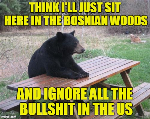 THINK I'LL JUST SIT HERE IN THE BOSNIAN WOODS AND IGNORE ALL THE BULLSHIT IN THE US | made w/ Imgflip meme maker