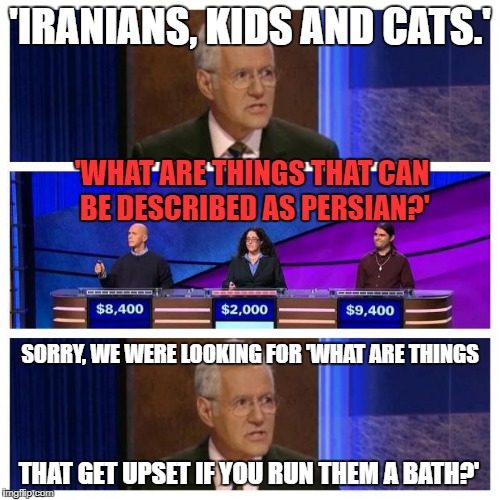 Getting a bit obscure, there, Alex. | 'IRANIANS, KIDS AND CATS.' THAT GET UPSET IF YOU RUN THEM A BATH?' 'WHAT ARE THINGS THAT CAN BE DESCRIBED AS PERSIAN?' SORRY, WE WERE LOOKIN | image tagged in jeopardy,islam,cats | made w/ Imgflip meme maker